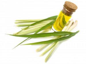 Lemongrass Oil for swollen gums